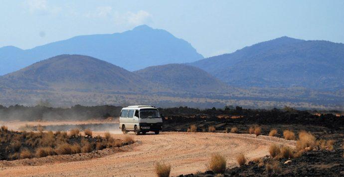 In Pictures: safari, pura gioia del viaggiare