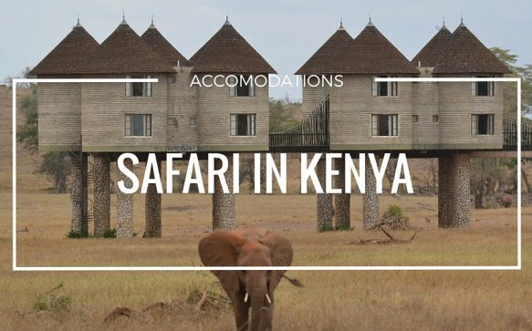 Safari: accomodations degne di nota