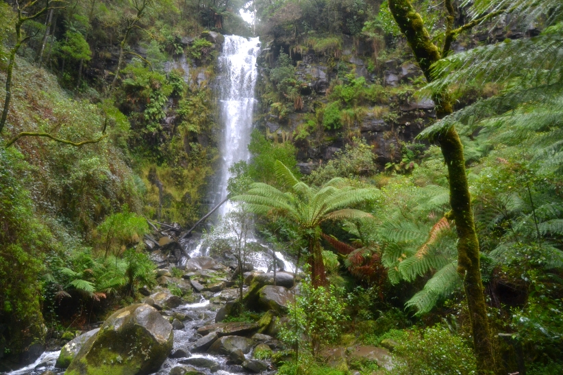 Erskine Falls (2)