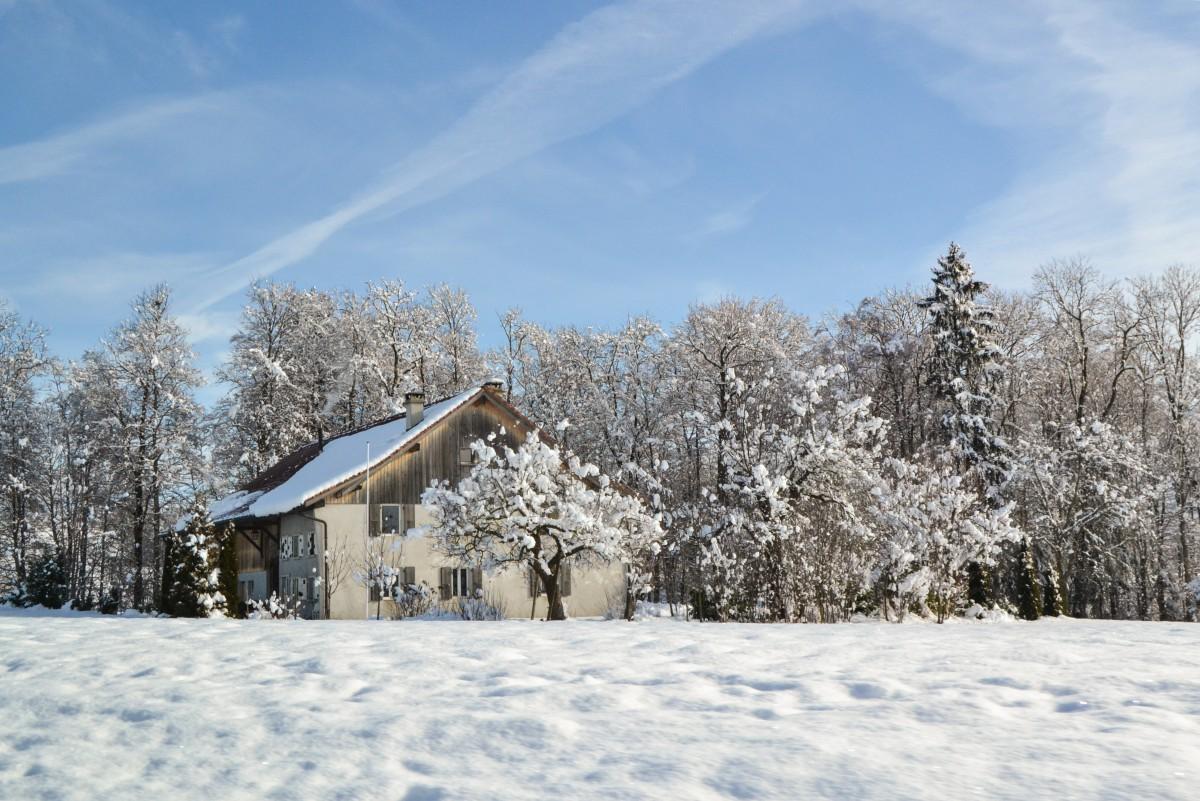 svizzera inverno 1