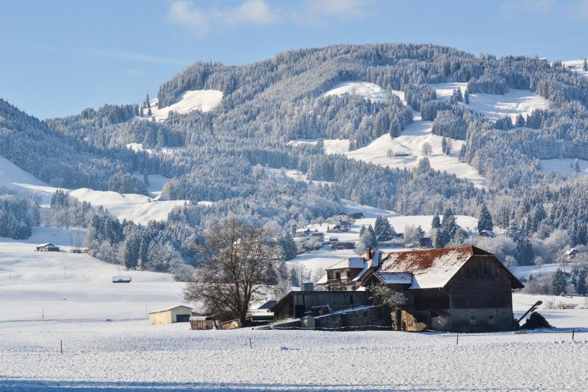 svizzera inverno 3 (2)