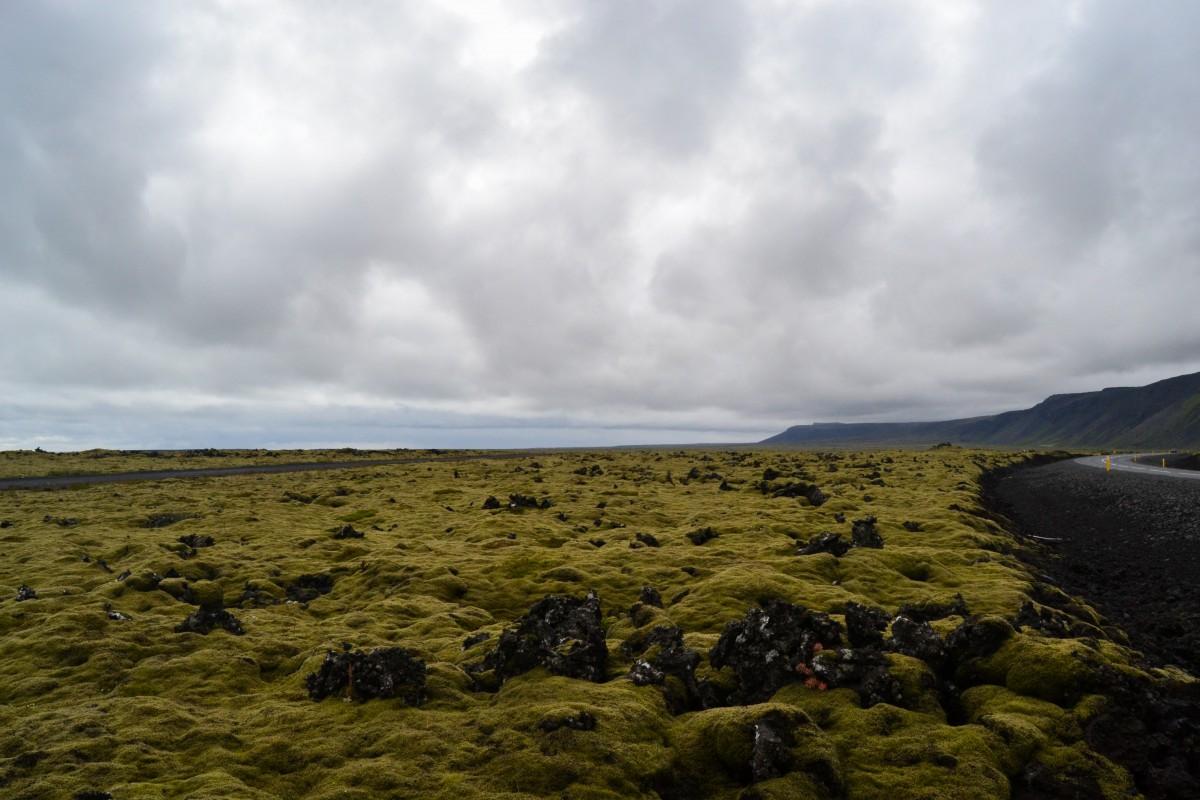 Islanda_costa del sud