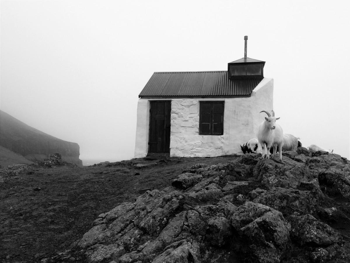 Islanda_nebbia e relitti 10