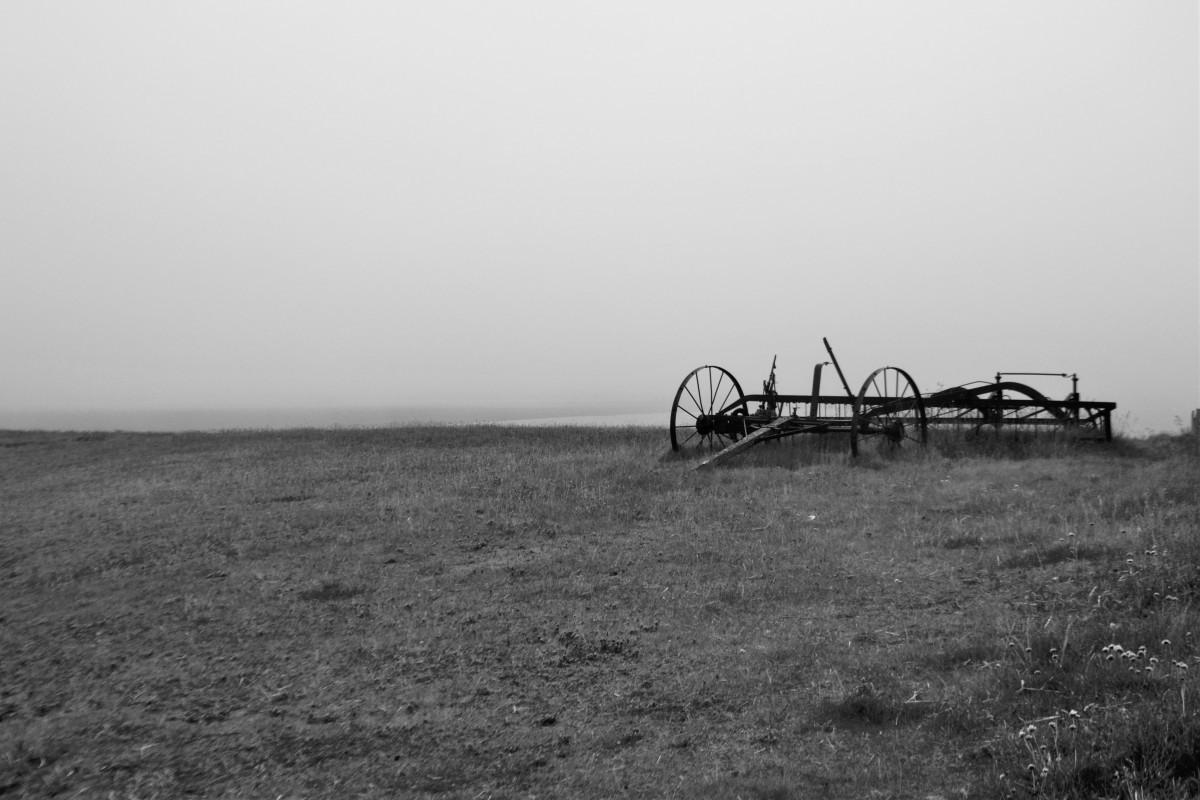 Islanda_nebbia e relitti 2