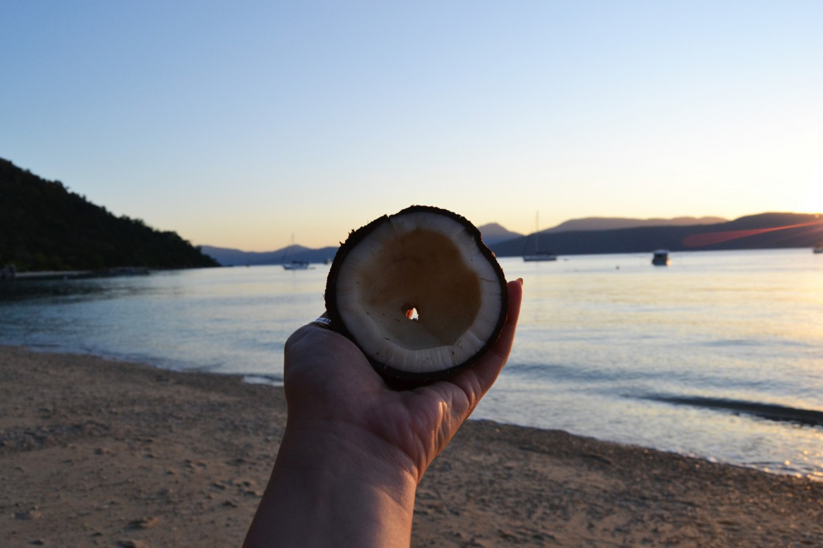 Fitzroy Island 4