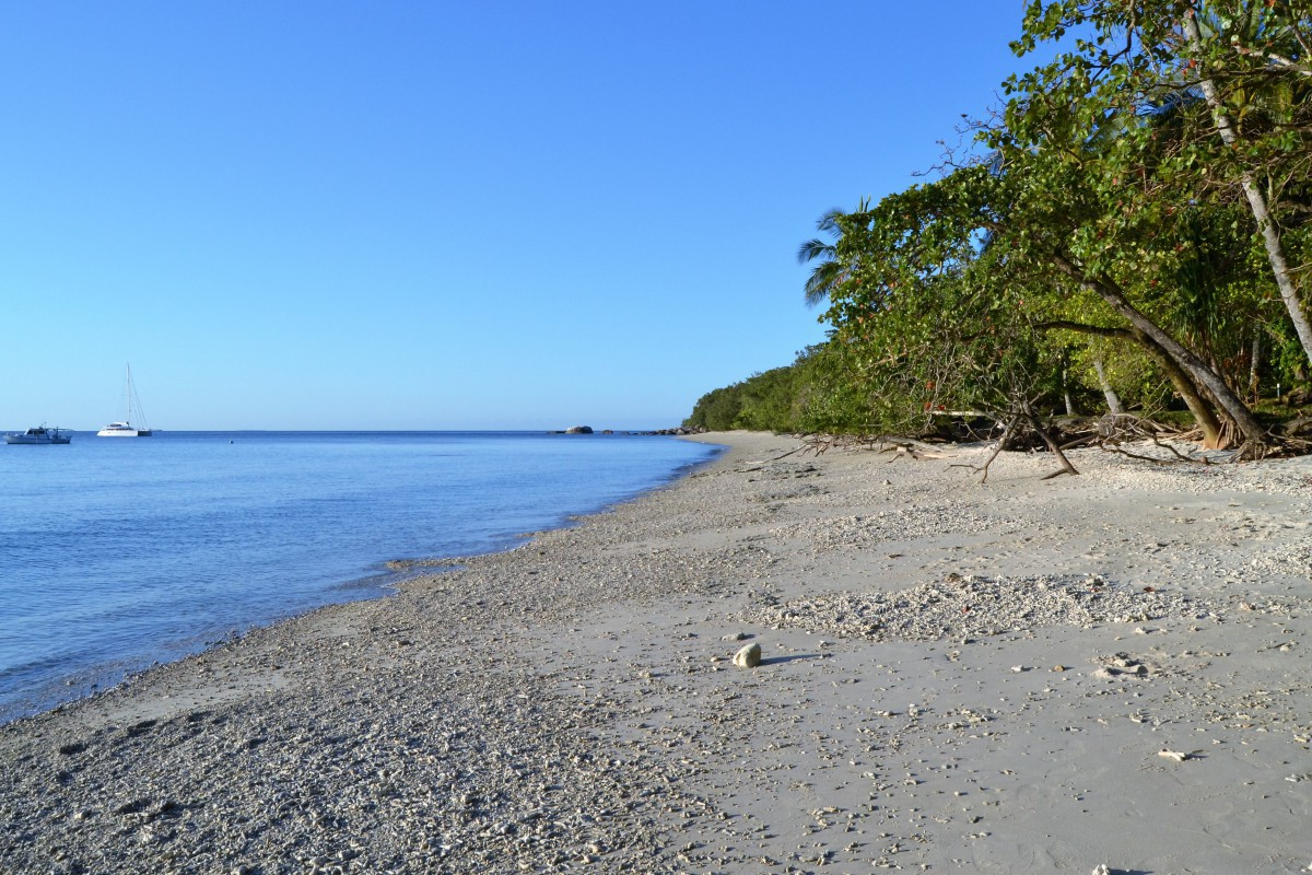 Fitzroy Island 6