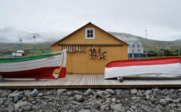Islanda del nord: le punte di diamante