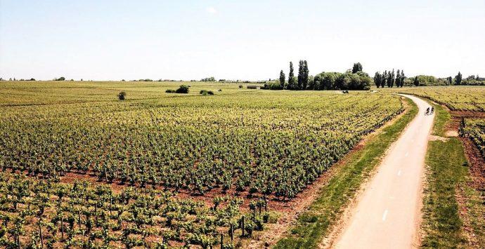 Lungo la strada dei vini: l'itinerario del mio viaggio in Borgogna